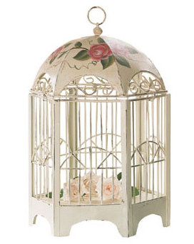 Open your  birdcage